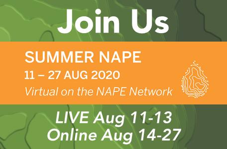 475x313 Summer NAPE